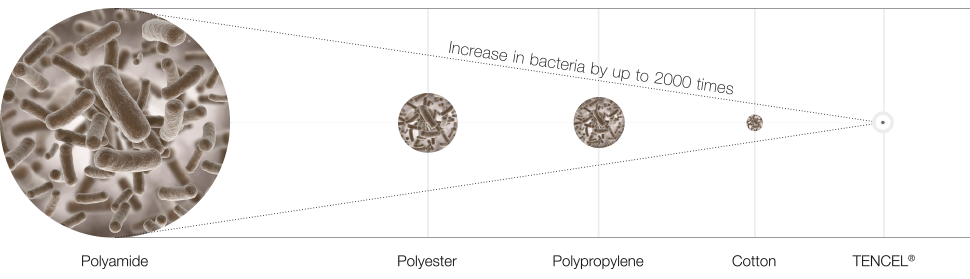 bakterien_970x279_EN_neu